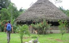 Rencontre des indigènes Bribris