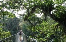 HANGING BRIDGES - ARENAL VOLCANO NATIONAL PARK -  SARAPIQUI