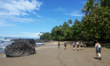 TROPICAL HIKE FROM TORTUGUERO TO CORCOVADO